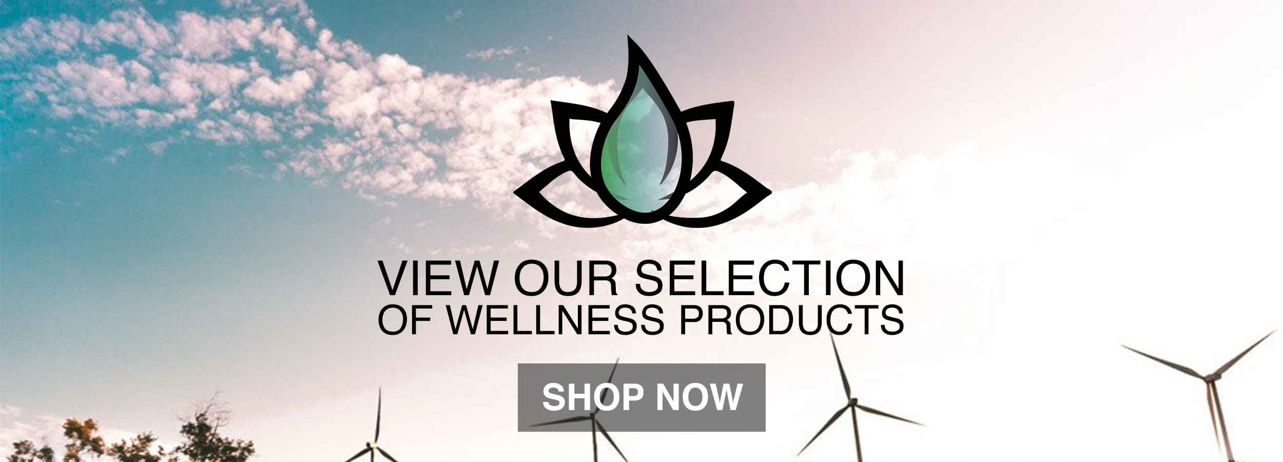 Shop for some wellness supplements